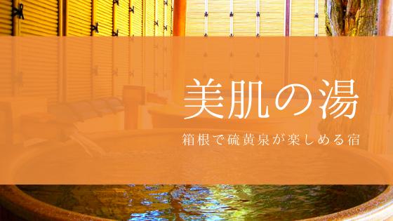 箱根芦之湯温泉 美肌の湯 きのくにや